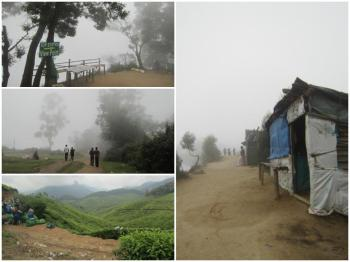 Kerala 7